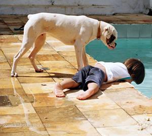 at pool
